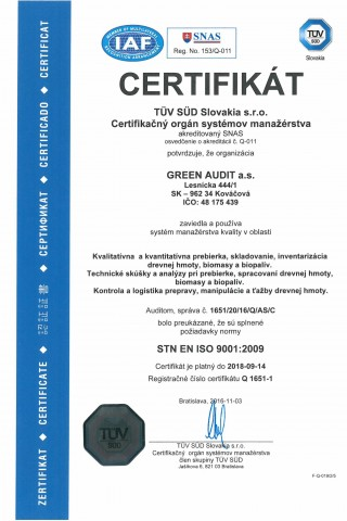 GREEN AUDIT ISO 9001